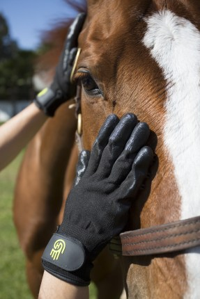 HandsOn Grooming/Bathing Gloves – Jopps Tack